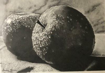 Orvalho sobre maçãs - Sandra Lima