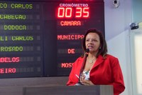 Aline Couto defende reserva de mercado na construção civil