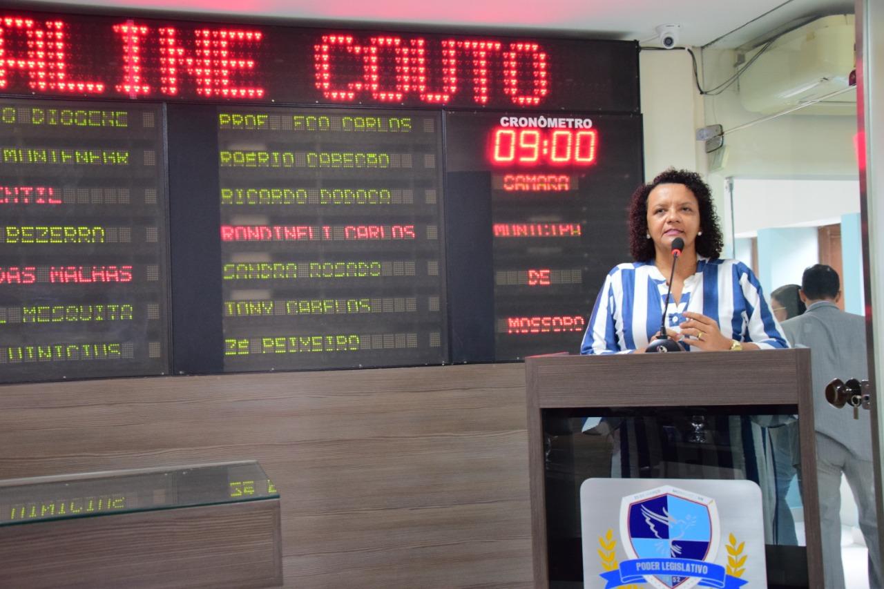 Aline Couto presta contas de ações do mandato